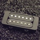 Picture of Genuine Texas Humbucking